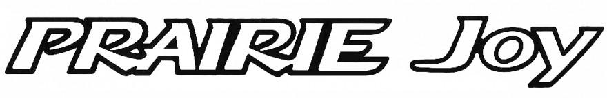 Nissan Praire Joy logo